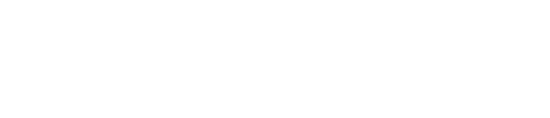 Black Hat Gold Sponsor Solera Networks